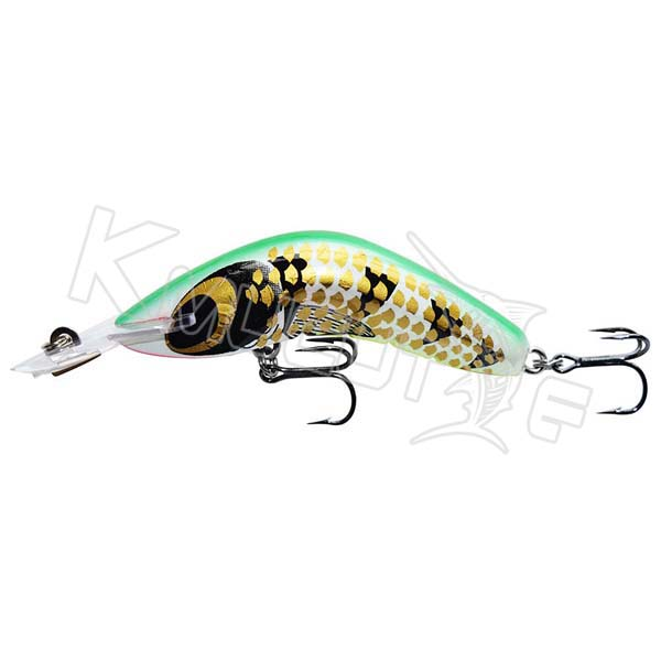 Curving Back Minnow lures