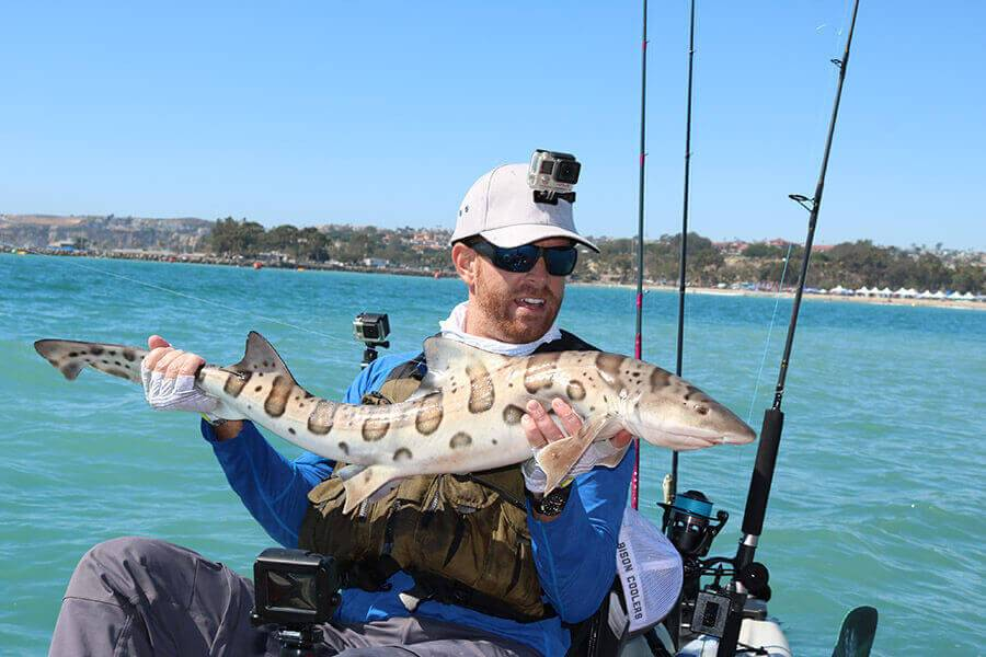 Big River Feeder Fishing – Bootlaces